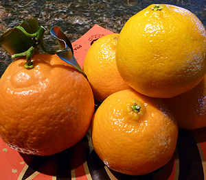 Tangerine is for gold and good fortune